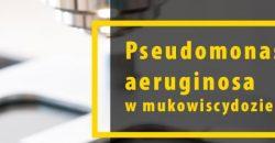 Pseudomonas aeruginosa a mukowiscydoza